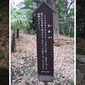 水戸殿上屋敷跡(文京区小石川)小石川後楽園 木曽山