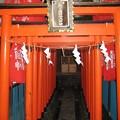 小石川諏訪神社(後楽2丁目)思の森(うぶしのもり)稲荷神社