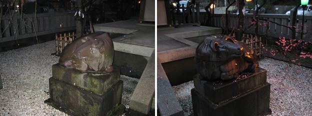 11.03.01.北野神社(牛天神。春日1丁目)神使