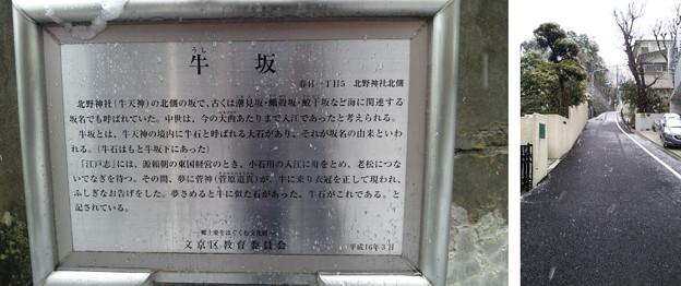 11.03.07.牛坂(春日1丁目)