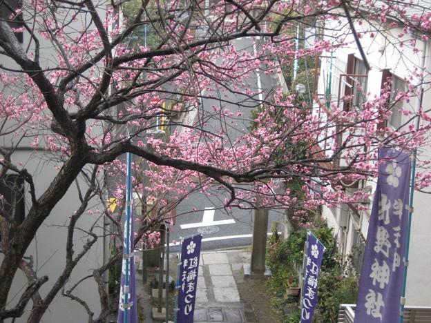 14.02.27.北野神社(牛天神。春日1丁目)