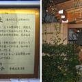 11.03.01.北野神社(牛天神。春日1丁目)太田・高木神社