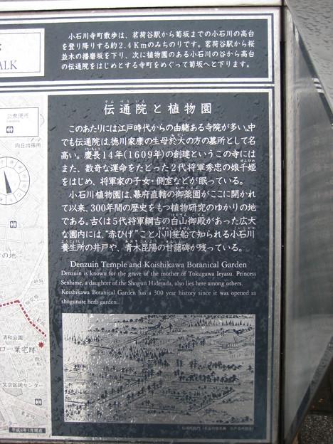 小石川伝通院(文京区)