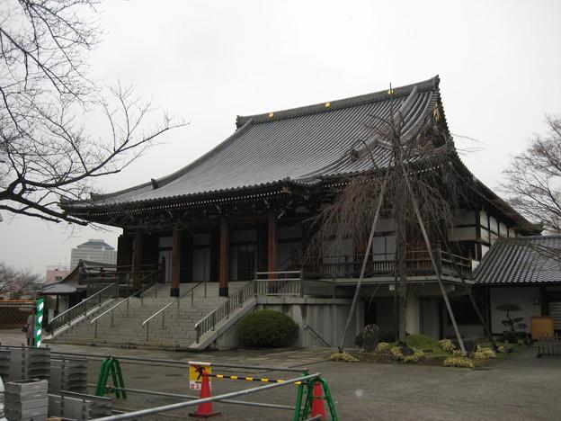 小石川伝通院(文京区)本堂