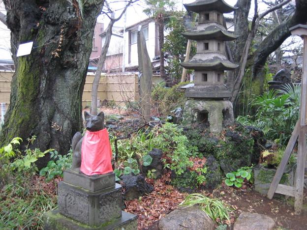 慈眼院 澤蔵司稲荷神社(小石川3丁目)