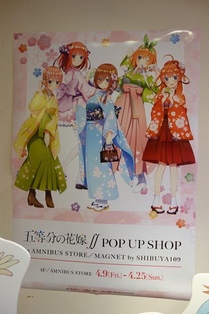 五等分の花嫁∬POP UP SHOP in AMNIBUS STORE