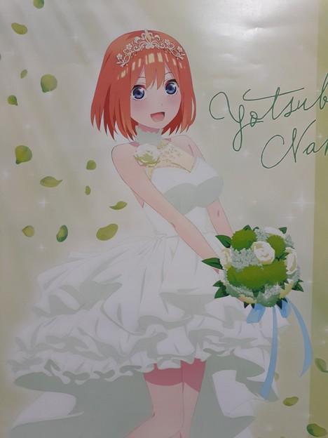四葉 花嫁 可愛いよ(>_<)