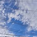 Photos: 2021.8.20 今朝の青空