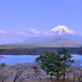 富士山 日和