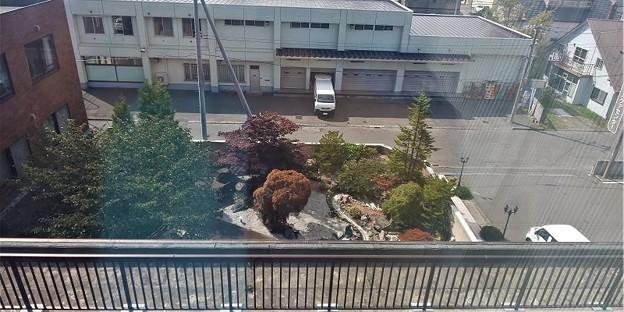 四階から見た庭園