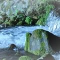 川の流れ-1
