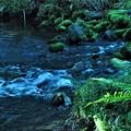 川の流れ-3