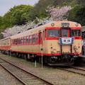 #8220 いすみ鐵道キハ52 125+キハ28 2346 2021-4-3