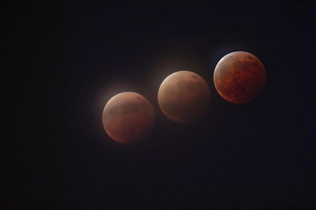 皆既月食2021