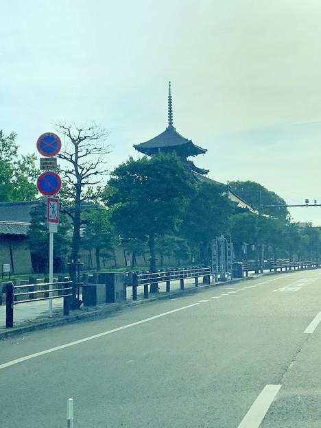 左手に東寺を見ながら・・・
