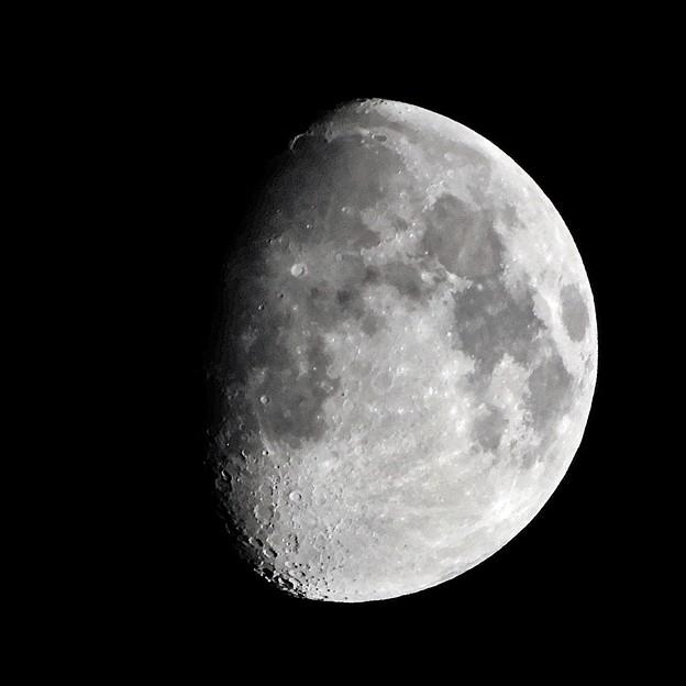 Photos: 十一夜の月 210522大