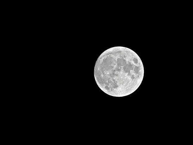 Photos: 十四夜の月 210920小