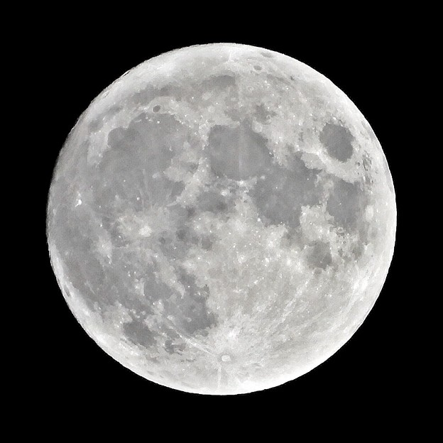 Photos: 十四夜の月 210920大