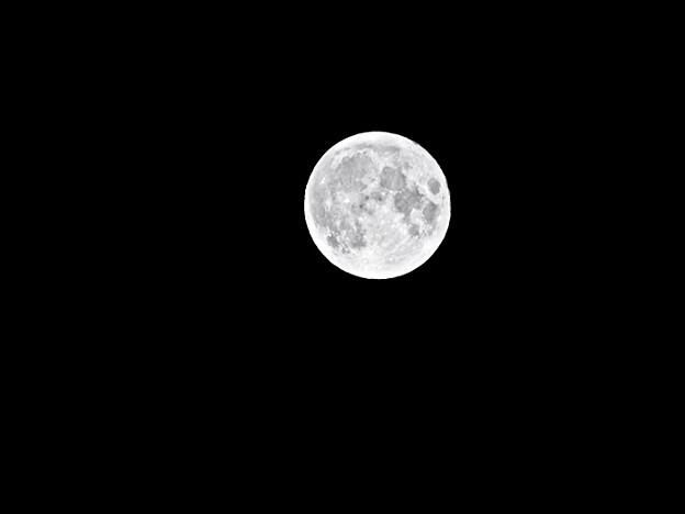 Photos: 十五夜の月 小 210921