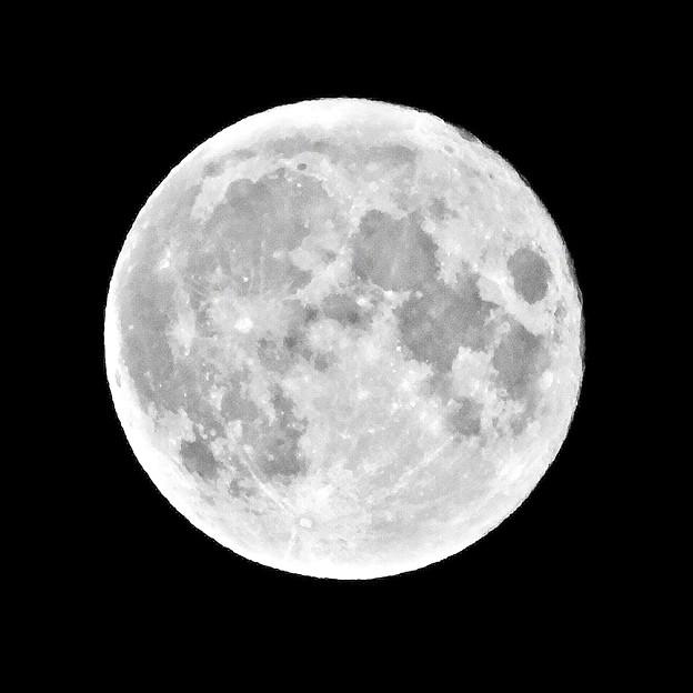Photos: 十五夜の月 210921大