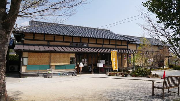梅の花神埼村 (4)