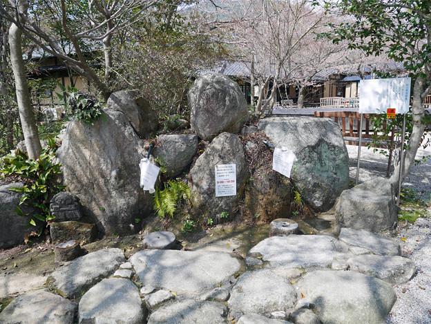 梅の花神埼村 (6)