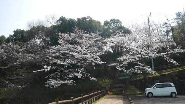 仁比山公園@2021 (8)