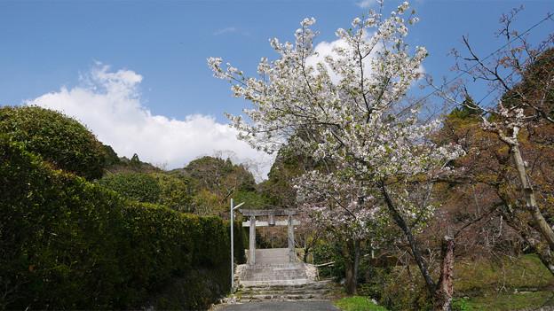 仁比山神社@2021 (9)
