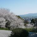 Photos: 笹山公園 (14)