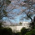 Photos: 笹山公園 (15)