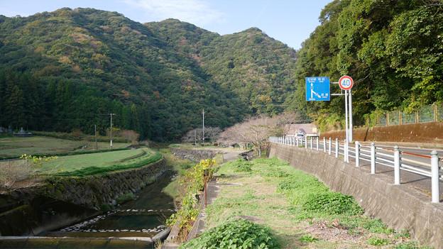 稗ノ尾河川公園 (1)