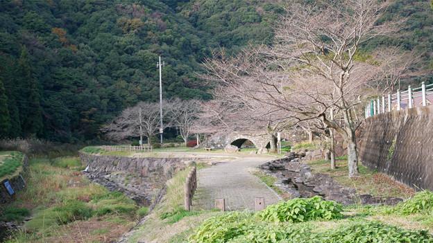 稗ノ尾河川公園 (2)