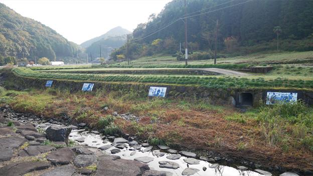 稗ノ尾河川公園 (5)