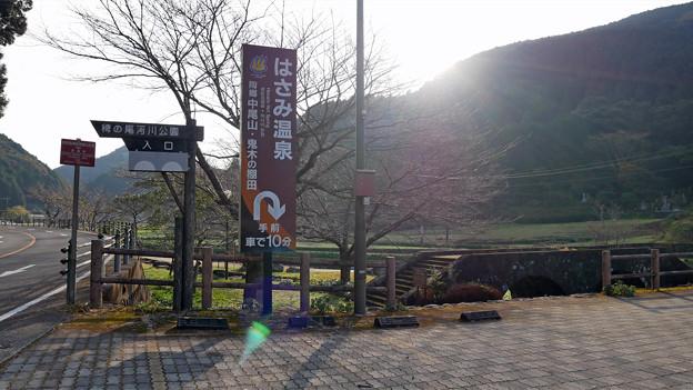 稗ノ尾河川公園 (7)