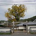 有田皿山 泉山口屋番所 (1)
