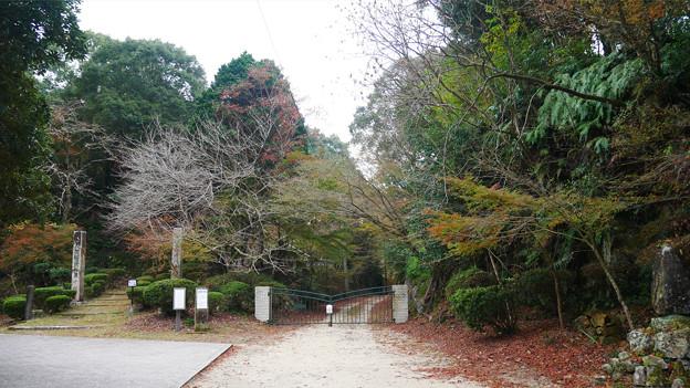 有田・石場神社 (2)