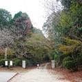 Photos: 有田・石場神社 (2)