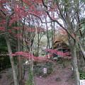竜門峡 (5) 竜門峡キャンプ場
