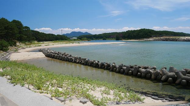 Photos: 花鶴ヶ浜公園 (13) 振り返る