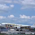 Photos: エアバス350-900 JA06XJ