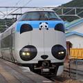 パンダ列車 3編成目