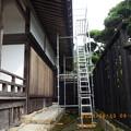 Photos: 浄光寺本堂13