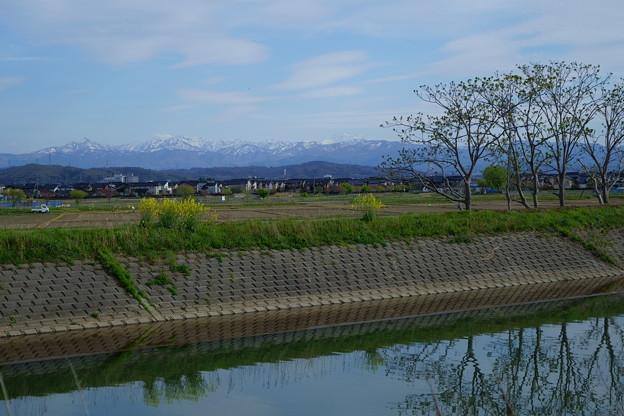 長閑な春の風景
