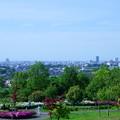 Photos: 大乗寺丘陵公園 街並み