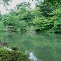 新緑の瓢池