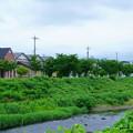 浅野川と街並み