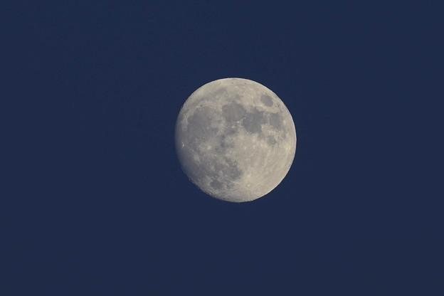 月 月齢12.1 ノートリミング