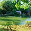 霞が池   内橋亭(1)