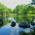 真夏の霞が池