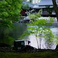 松風閣庭園(1)